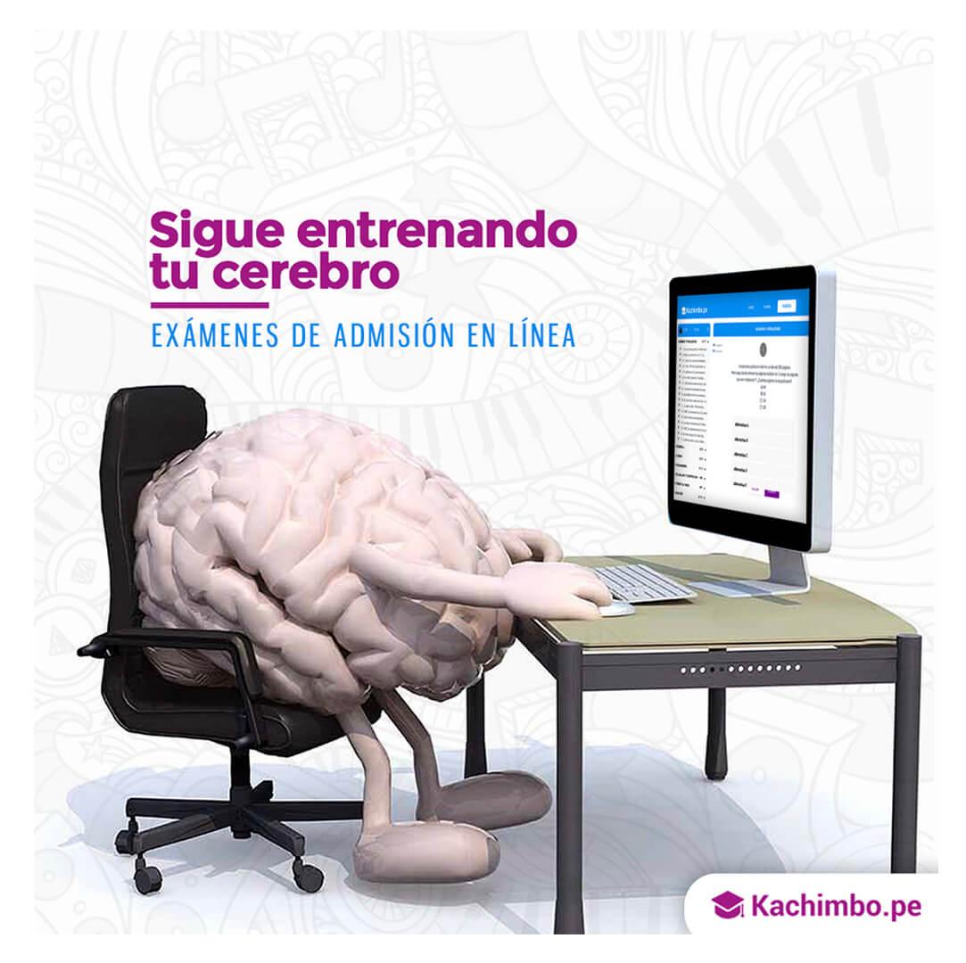 Marketing Digital para Redes Sociales - Kachimbo